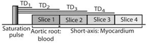 Schematic diagram of the mulit-slice with sequential TD first-pass perfusion CMR pulse sequence