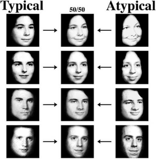 Examples of the atypical and typical female and male faces and their 50/50 morph faces used in the Tanaka et al. (1998) study.