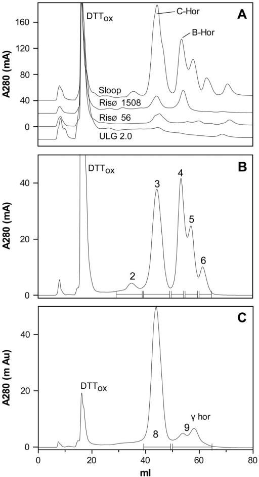 Isolation of hordein fractions by FPLC.A: The eluant A280 from a 1 mL injection of Urea/DTT extract from cv Sloop, Risø 1508, Risø 56 or ULG 2.0 is shown with individual curves offset for clarity. The identity of peaks containing oxidised DTT (DTTox), B- (B-Hor), C- (C-Hor), and γ (γ-Hor)-hordeins of cv Sloop are shown. The eluate from 20 mL to 80 mL was pooled and lyophilised for total hordeins from each line. B & C: Fractions enriched for C-hordeins from cv Sloop (B, peak 3) and Risø 56 (C, peak 8); and γ-hordeins from Risø 56 (C, peaks at 9) were isolated by pooling the indicated eluate (–). Peak 2 did not contain any protein. Peaks 4, 5, 6 were not analysed.