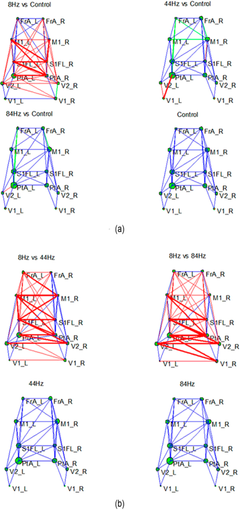 The network topology for the four conditions.(a) The network topology difference between the three frequency stimuli networks and the control state network. The actual anatomic coordinates of these nodes are illustrated in Figure 7; (b) The network topology difference between the 8 Hz network and the other two frequency stimuli networks. Based on two paired t-tests, the red line denotes the edges with a statistically significant increase (p<0.05) in linkage between the compared two networks, and the thickness of the edge indicates the strength of the increase. The green line denotes a significant decrease (p<0.05) in strength, while the blue lines denote no statistical difference between the two compared networks. The size of green circle represents the Hub coefficients of each node.