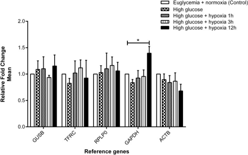 Effect of hyperglycemia and hypoxia on gene expression of the selected reference genes. Fold change in gene expression analyzed by the 2−∆CT method. Data are mean ± SEM, n = 3–4, *P < 0.05 vs. control. Expression of GUSB, TFRC, RPLP0, and ACTB was found to be stable, whereas GAPDH was increased with borderline significance after 12 hr of hypoxia compared with the control.