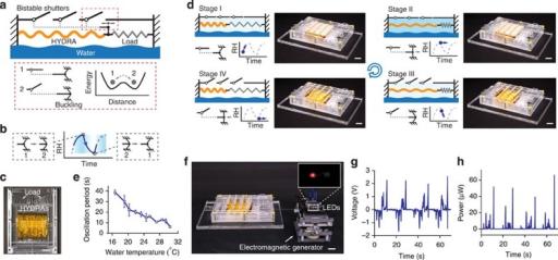 The evaporation-driven oscillatory engine (a) The oscil | Open-i