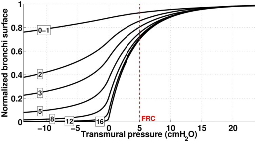 Dependence of bronchi surface area (normalized) with bronchi transmural pressure. The numbers correspond to the generation index and the red dashed line represents bronchi state at FRC.
