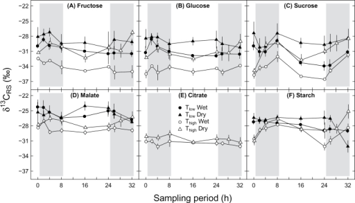 Daily cycles of the carbon isotopic composition of different leaf respiratory carbon sources (δ13CRS) under different environmental conditions during the sampling period: (A) fructose, (B) glucose, (C) sucrose, (D) malate, (E) citrate, and (F) starch. Potato plants were treated with a combination of Tlow (low temperature; closed symbols), Thigh (high temperature; open symbols), and wet (circles) or dry (triangles) conditions. Results for fructose are affected by co-elution with other compounds. Grey areas indicate nighttime. Means ± SE are given (n=2–3).