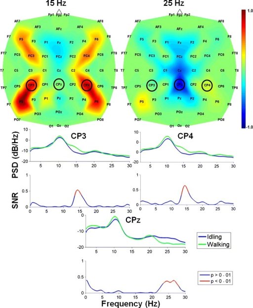 EEG feature extraction maps. Top: Feature extraction maps obtained by a combination of CPCA and AIDA for classification of attempted walking versus idling. The spatial distribution of features is shown for the frequency bands centered at 15 Hz and 25 Hz, where the features with values close to ±1 are more important for classification. The maps were generated from data collected during the last visit. Bottom: Log power spectral density (PSD) during idling (blue) and walking (green) at electrodes CP3, CPz, and CP4, where shaded regions represent error bars. Underneath the PSD plots are the corresponding signal-to-noise ratio (SNR) plots with significant SNRs (p < 0.01) represented by red lines. Note the event-related synchronization (ERS) in the 13–16 Hz range (at CP3 and CP4) and event-related desynchronization (ERD) in the 23–28 Hz range (at CPz)