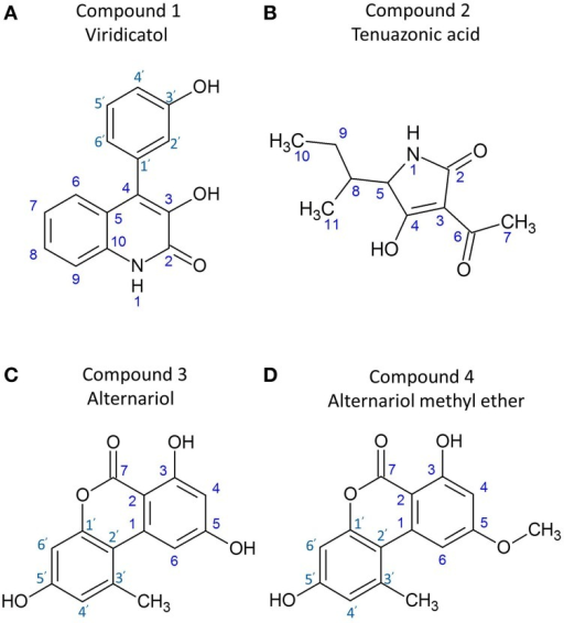 Structures of the purified anti-Fusarium compounds from endophyte WF4. Shown are the structures for: (A) viridicatol alkaloid, (B) tenuazonic acid, (C) alternariol, and (D) alternariol monomethyl ether.