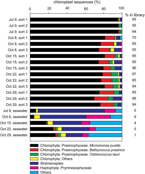 Contributions of the most frequently occurring eukaryotic phyla among chloroplast sequences detected in each of the sorted photosynthetic picoeukaryote samples (1,000 P1 cells, triplicate samples) and the corresponding seawater samples (0.2–10 μm) for each sampling date. The percentage of chloroplast sequences within each library is indicated to the right of each bar.