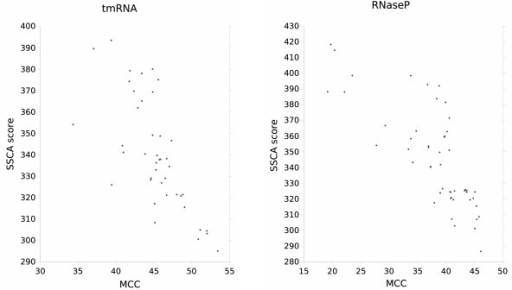 Correlation between SSCA scores (using the model ) and average MCC scores of homologous sequences of tmRNA (left) and RNaseP (right) alignments. Homologous sequences with the lowest SSCA scores have the highest average MCC scores. The best correlation is for the low SSCA scores.