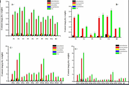 TA production analyzed by HPLC. A) TA content in transgenic P lines. B) TA content in transgenic T lines. C) TA content in transgenic PT lines. BC, control hairy root cultures generate from blank-vector transformation. The values are means ± S.D of triplicate analyses. *, **, and *** Significant difference at P < 0.05, 0.01, and 0.001 respectively.