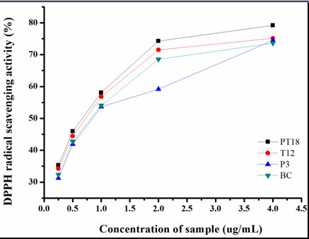DPPH scavenging activities of methanolic TA from four different hairy root lines (P3, T12, PT9 and BC). Results represent means ± standard deviation (n = 3).