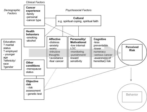 Interrelated factors associated with cancer risk perception. Conceptual model of factors thought to be associated with perceived risk for cancer.