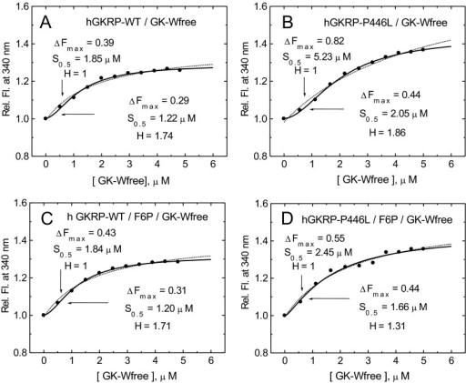Co-operativity of GK–GKRP complex assembly(A and B) Relative TF increase for 0.3 μM GKRP in the presence of increasing amounts of GK-W99R/W167F/W257F (GK-Wfree) for GKRP-WT (A) and for GKRP-P446L (B). (C and D) The effect of increasing amounts of GK-W99R/W167F/W257F on the TF of 0.3 μM GKRP in the presence of 500 μM F6P are shown for GKRP-WT (C) and GKRP-P446L (D) (λexc=295 nm; λem=340 nm). Comparison of the curve fitting by simple saturation or sigmoidal functions is shown in Supplementary Table S6 (at http://www.biochemj.org/bj/459/bj4590551add.htm).