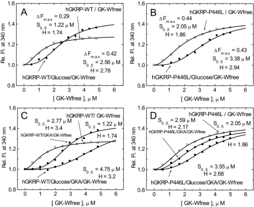Co-operativity of GK–GKRP complex assembly(A and B) Relative TF change for 0.3 μM GKRP in the presence of increasing amounts of GK-W99R/W167F/W257F (GK-Wfree), and in the absence (○) or presence (●) of 100 mM D-glucose for GKRP-WT (A) and for GKRP-P446L (B). (C and D) The effect of increasing amounts of GK-W99R/W167F/W257F on the change in TF for 0.5 μM GKRP can be seen in the absence (○) or presence (●) of 20 μM GKA or 20 μM GKA and 100 mM D-glucose for GKRP-WT (C) and GKRP-P446L (D) (λexc=295 nm; λem=340 nm).