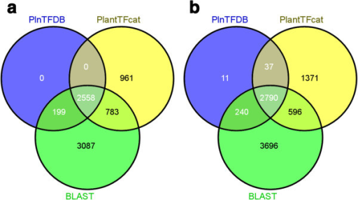 Venn diagrams that show the differences in prediction results between PlantTFcat and BLAST-based methods. PlnTFDB represents the TF/TR dataset downloaded from PlnTFDB, PlantTFcat represents the PlantTFcat predictions, and BLAST represents the BLAST search predictions. (a) The results using the Arabidopsis thaliana gene models release 8 (TAIR8) as the test dataset. (b) The results using the Populus trichocarpa JGI gene models v1.1 as the test dataset.