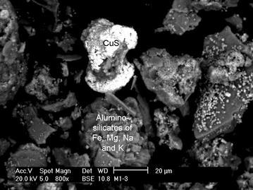 Scanning electron micrograph and SEM-EDAX analysis of the UV-dried mine heap sample added to Erlenmeyer flasks during the biooxidative assays.