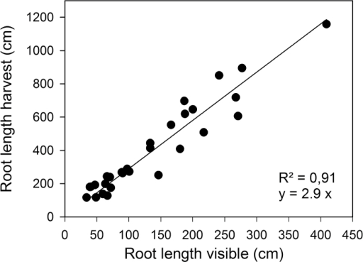 Ratio between visible and non-visible root system of wheat plants grown in soil-filled rhizoboxes. Root length visible at the transparent surface of the rhizoboxes is plotted against the total root length after harvesting the plants.