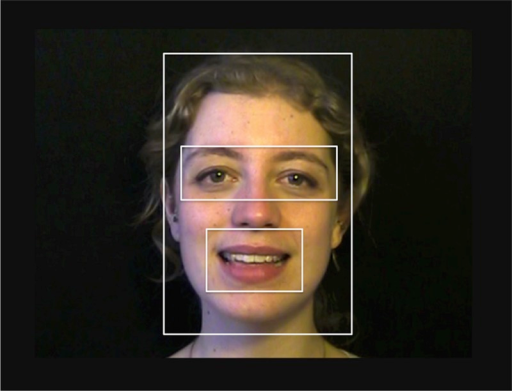 The four regions of interest: eyes, mouth, rest of the face, rest of the screen.