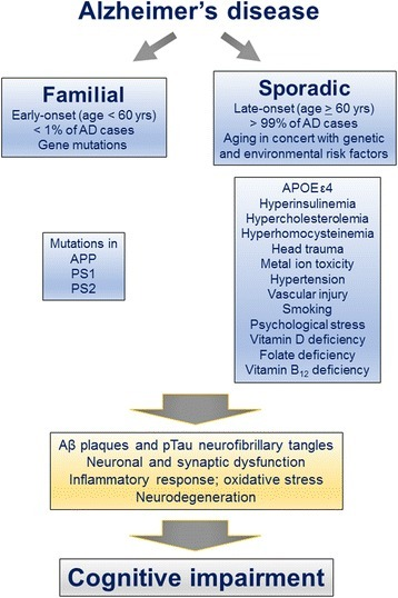 Multifactorial nature of AD and involvement of several different etiopathogenic mechanisms. Early-onset familial AD caused by mutations in APP, PS1, or PS2 constitutes < 1 % of AD cases. The exact causes of late-onset sporadic AD which accounts for the remaining > 99 % of AD cases are as yet largely unknown. However, aging alongside gene-environment interaction is speculated to contribute to this form of AD. Both forms of AD lead to amyloid plaque and neurofibrillary pathologies, synaptic dysfunction and neurodegeneration, and ultimately cognitive impairment