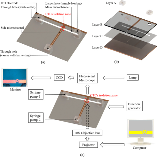 Schematic illustration of the (a) top-view layout and (b) assembly of the microfluidic system (Layer A: PDMS; Layer B: Etching-treated ITO glass; Layer C: Microfabricated adhesive tape; Layer D: ITO glass coated with photoconductive material) and the (c) overall experimental setup.