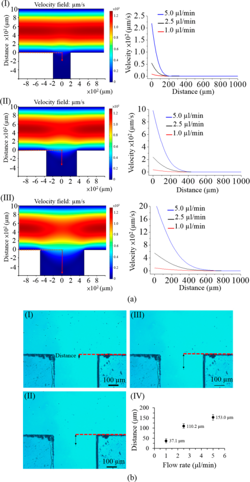 (a) Simulated flow patterns of T-shaped microchannel with three different side microchannel widths [(I) 400, (II) 700, and (III) 1,000 μm] under a given flow rate of 1 μl min−1 in the main microchannel (the left column); simulated flow velocity profiles along with the distance from the central start point of the side microchannel under three different side microchannel widths [(I) 400, (II) 700, and (III) 1,000 μm] and three different flow rate conditions (1.0, 2.5, and 5.0 μl min−1) in the main microchannel (the right column); (b) microscopic observations of the travel distance of a cell from the main to the side microchannel under three different flow rate conditions [(I) 1.0, (II) 2.5, and (III) 5.0 μl min−1)] in the main microchannel (given side microchannel width: 400 μm); (IV) the quantitative relationship between the measured travel distance of a cell from the main to side microchannel and the flow rate conditions (1.0, 2.5, and 5.0 μl min−1) in the main microchannel.