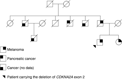 Family tree of patient carrying the CDKN2A exon 2 deletion.