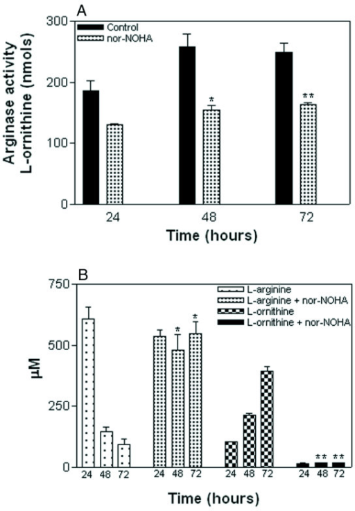 Effect of nor-NOHA on arginase activity and amino acid levels. (A) Significant arginase inhibition was observed in cell lysates of CL-19 cultures treated with nor-NOHA (2 mM) after 48 (*P = 0.002) and 72 hours (** P = 0.001) as compared to untreated cells. (B) Effect of nor-NOHA in inhibiting both L-arginine (μM) depletion (*P = 0.001) and L-ornithine (μM) production (**P < 0.0001) in the supernatants of CL-19 cultures, as compared to CL-19 untreated cultures. Results are expressed as means ± SE of duplicate determinations from four independent experiments.