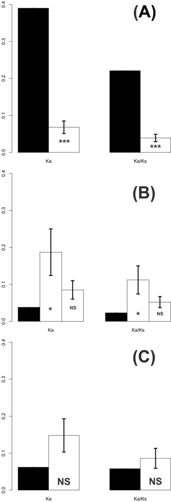 Observed (filled box) and simulated (open box) Ka and Ka/Ks values for VP1 (A), 2A (B), and 3C (C), respectively, between enterovirus (EV) 71-B4 and human enterovirus(HEV)-A. Simulated Ks values were set equal to the observations. The proportions of nonsynonymous (N) and synonymous (S) mutations were determined according to the observed N/S ratios in polymorphisms which were 0.10 for VP1, 0.24 and 0.12 for 2A, and 0.21 for 3C (see Table 2 and text for details). The error bar represents 1 standard deviation. p values were determined by 10,000 simulations. * p < 0.05; *** p < 0.001; NS, not significant (p > 0.05).