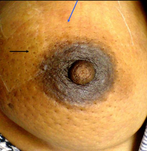 Sexy asian boobs nude