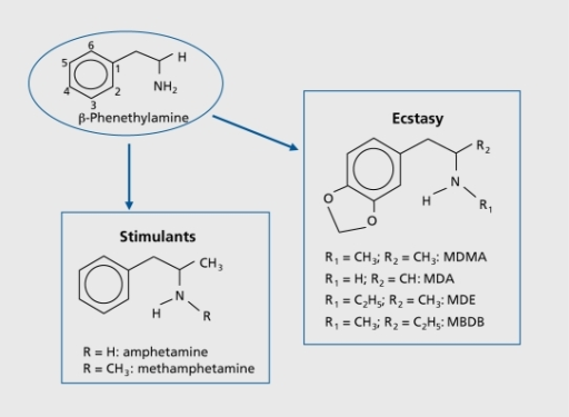 a laboratory experiment report on the synthesis of mda 34 methylenedioxyamphetamine E is for ecstasy by led to the design and carrying out of an experiment evaluating kuhar, mj and molliver, me methylenedioxyamphetamine (mda.