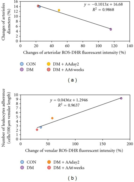 Percentage of changed DHR intensities and number (Cn) of leukocyte-endothelial cell interaction in each group of control (CON), diabetes (DM), diabetes treated with vitamin C (1 g/L) starting on day 2 (DM + AAday2), and on 6 weeks (DM + AA6wk) after STZ injection was plotted. The correlation and regression line were obtained for each group as demonstrated in (a). In (b), the correlation and regression line were obtained for combined data of every group.