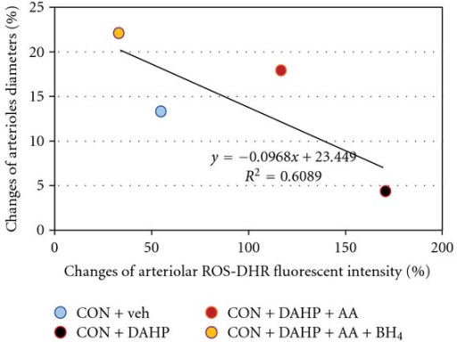 The correlation and regression line between percentage changes of ROS (intensities/100-μm arteriolar length) and arteriolar diameters in response to Ach from mesenteric arterioles in the presence or absence of BH4 synthetic inhibitor were obtained when combined the data of every group.