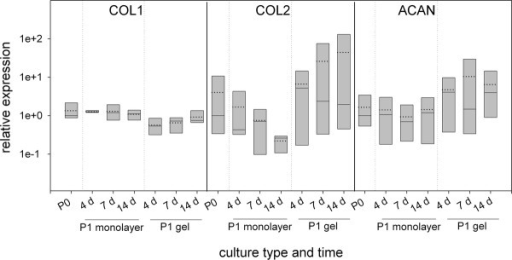 mRNA expression profiles of human disc cell preparations cultured in vitro in monolayer or hydrogel. P1 cells were harvested at days 4, 7, and 14 and the expression of collagen type I (COL1), collagen type II (COL2), and aggrecan (ACAN) was analyzed. Expression values of the P1 cultures are expressed relative to the median expression of the cells at the end of the expansion phase (P0) (median because the data are not normally distributed). Boxes represent 25%/75% percentiles, mean values (dotted line) and median values (solid line).