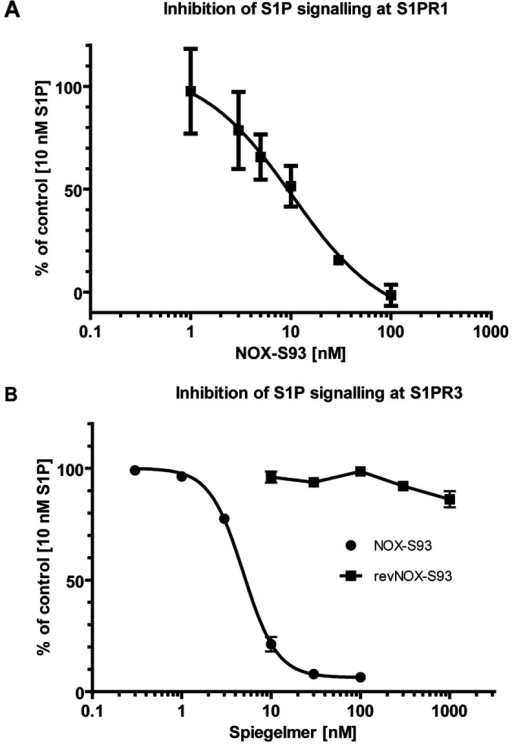 Inhibition of S1P signalling by NOX-S93 in cell-based assays(A) PathHunter™ eXpress growth-arrested EDG-1 CHO-K1 β-arrestin cells were stimulated with 10 nM S1P in the presence of the indicated concentrations of NOX-S93. The activity of the reporter enzyme, β-galactosidase, was measured and plotted against the Spiegelmer® concentration as a percentage activity with the largest value set to 100%. In this representative experiment NOX-S93 inhibited the S1PR1 mediated effects of S1P with an IC50 of 10.3 nM (means±S.D. of triplicate assays). (B) Intracellular calcium signalling in stably transfected CHO cells expressing S1PR3 and Gα15 was stimulated with 10 nM S1P in the presence of the indicated concentrations of NOX-S93. Increase in intracellular calcium was measured and plotted against the Spiegelmer® concentration as a percentage with the largest value set to 100%. NOX-S93 (●) inhibited the S1P-induced calcium increase with an IC50 of 5.45±0.89 nM (n=4). The graph is representative of the result of one experiment (means±S.D. of triplicate assays). The control Spiegelmer® revNOX-S93 (■) showed no inhibition (n=3).