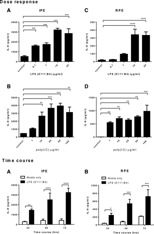 Dose response and time course of IL-8 secretion from LP