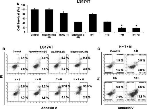 Synergistic induction of cytotoxicity by treatment with Ad.TRAIL in combination with mitomycin C and hyperthermia in LS174T cells. LS174T cells were treated with Ad.TRAIL (MOI 25) or/and mitomycin C (5 µg/mL) for 24 h and exposed to normothermia (37 °C) or hyperthermia (42 °C) for 1 h, and then incubated for 3 h at 37 °C. a Cell survival was analyzed by the trypan blue dye exclusion assay. b Cells were stained with fluorescein isothiocyanate (FITC)-Annexin V and propidium iodide (PI). c Cells were treated with Ad.TRAIL (MOI 25) and mitomycin C (5 µg/mL) for 4, 8, and 16 h and exposed to hyperthermia (42 °C) for 1 h, and then incubated for 3 h at 37 °C. Apoptosis was detected by the flow-cytometric assay