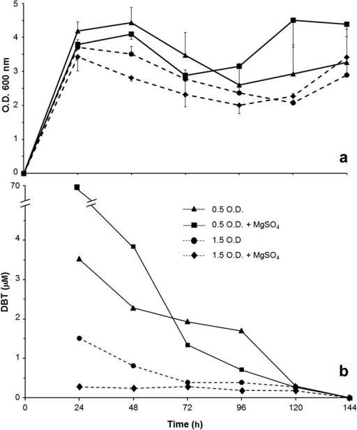 Temporal profiles ofBacillus pumilus-like RR-3 strain in LB + 0.5 mM DBT media. (a) Growth curve assessed by optical density (OD at 600 nm) of cell mass in culture at different times. (b) Residual DBT concentration (μM) in culture media at the same time points. As indicated by the legend in the graph, the four different growing conditions were established in 10-mL cultures by varying the presence of MgSO4 (6.65 μM) in the medium, combining with two amounts of inoculum cells. The RR-3 inocula were established by adding pre-cultured cell suspensions, with 0.500 and 1.500 OD readings at 600 nm, at 5% of final culture volume. Treatments were applied in triplicate and the experiment was repeated at least once, with same results. Hexane extraction and HPLC analysis were used for detection of both compounds. Practically the whole amount of the applied DBT could be detected at time zero.