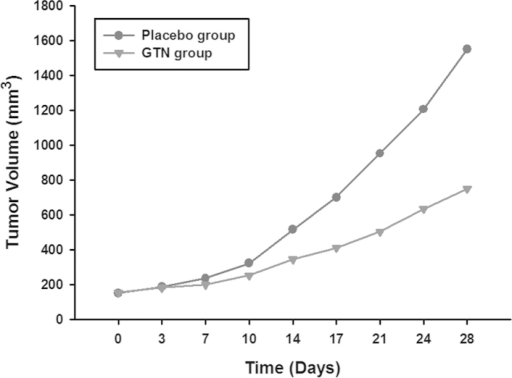Tumor growth of the GTN and placebo groups. Tumor volume was monitored every 3–4 days. With increasing treatment time, the tumors of the GTN group were markedly smaller compared with those of the placebo group. GTN, glyceryl trinitrate.