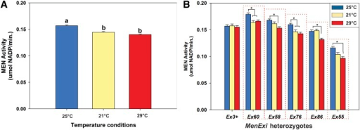 Change in environment (temperature) reduces transvection at Men. (A) Mean ± root mean square error MEN activity of all genotypes, all MenExi alleles, across five genetic backgrounds, from each holding temperature: 25° (control; blue bars), 21° (yellow bars), 29° (red bars). Both 21C and 29° groups are significantly lower than the 25° group; see text for exact P values. (B) Mean ± SE MEN activity of MenExi allele heterozygotes across five genetic backgrounds from flies held at 25°, 21°, and 29°. Asterisks indicate groups that were significantly different according to Tukey's honestly significant difference test (F10,2288= 1.775, P < 0.001, Tukey's honestly significant difference P < 0.05). Note that only MenExi− allele heterozygotes (boxed by red dotted line) show significant differences in MEN activity across holding temperatures.