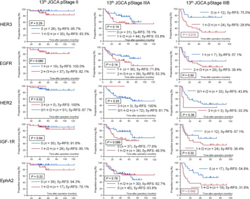 The 5y-RFS of patients with 13th JGCA pathological stage IIIB tumors with the indicated RTK expression, as detected using IHC, was analyzed using Kaplan Meier survival curves. The 5y-RFS of patients with HER3 and EphA2 overexpression was statistically significantly different from that of patients with no HER3 or EphA2 expression respectively (HER3; P = 0.019, EphA2; P = 0.042). EGFR, HER2 and IGF-1R overexpression also tended to indicate poor prognosis in 13th JGCA stage IIIB tumors.