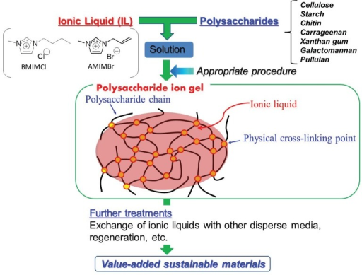Schematic diagram for procedures of fabrication of polysaccharide ion gels with IL and conversion into value-added sustainable materials.