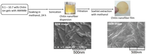 Procedures for fabrication of self-assembled chitin nanofiber dispersion and film, and their SEM images.