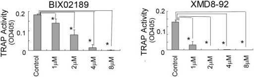 The TRAP activity in Raw264.7D clone cells was inhibited with BIX02189 or XMD8-92.RAW264.7D clone cells (5 × 103) were treated with BIX02189 (A) or XMD8-92 (B) in the presence of sRANKL (10 ng/ml). After 6 days, the TRAP activity was measured. Both BIX02189 and XMD8-92 inhibited TRAP activity in RAW264.7D clone cells. *P<0.05 compared with the culture without inhibitors.