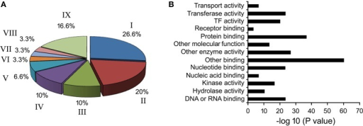 Gene ontology of phloem-specific transcripts. (A) Nine functional categories of the transcripts are represented by different letters in the pie chart. I. Response to biotic and abiotic stimulus, II. Developmental processes, III. Transcription, IV. Transport, V. Signal transduction, VI. Electron transport, VII. Cell organization and biogenesis, VIII. Protein metabolism, and IX. Unknown biological processes. (B) Distribution of Go terms based on their molecular function.