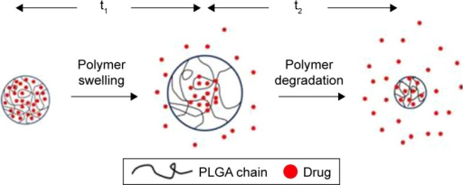 Schematic diagram explaining pH-dependent drug release shape.Note: Reprinted from Jia H, Kerr LL. Kinetics of drug release from drug carrier of polymer/TiO2 nanotubes composite-pH dependent study. J Appl Polym Sci. 2015;132:41750,77 with permission from John Wiley and Sons.Abbreviation: PLGA, poly(lactic-co-glycolic acid).