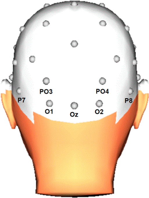 Diagram of the EEG electrodes included in the statistical analyses.3D head view created with BrainVision Analyzer 2.1, Brain Products GmbH, Gilching, Germany.