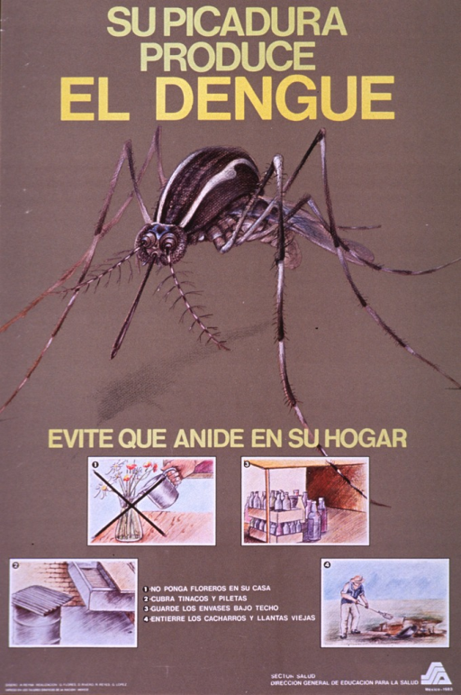 <p>Brown poster with yellow and white lettering.  Title at top of poster.  Dominant visual image is an illustration of a mosquito.  Caption below illustration urges reader to avoid having mosquitoes nest in the house.  Four smaller illustrations below the caption show ways to avoid nesting, including not keeping flowers inside, covering barrels and basins that collect water, keeping bottles sheltered, and burying trash and old clothes.  Publisher information in lower right corner.</p>