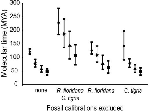 Influences of individual calibration points on node ages. Mean molecular divergence dates, ± 1 standard deviation, for the major lineages estimated using different combinations of fossil calibrations. Divergence dates were calculated using: all four fossil calibrations; all excluding the teiid Cnemidophorus tigris and the amphisbaenian Rhineura floridana; all except R. floridana; and all except C. tigris. Evolutionary splits are Teiidae-Amphisbaenia (circle), Amphisbaenia-Lacertidae (star), Gallotinae-Lacertinae (triangle), and Lacertini-Eremiadini (square).