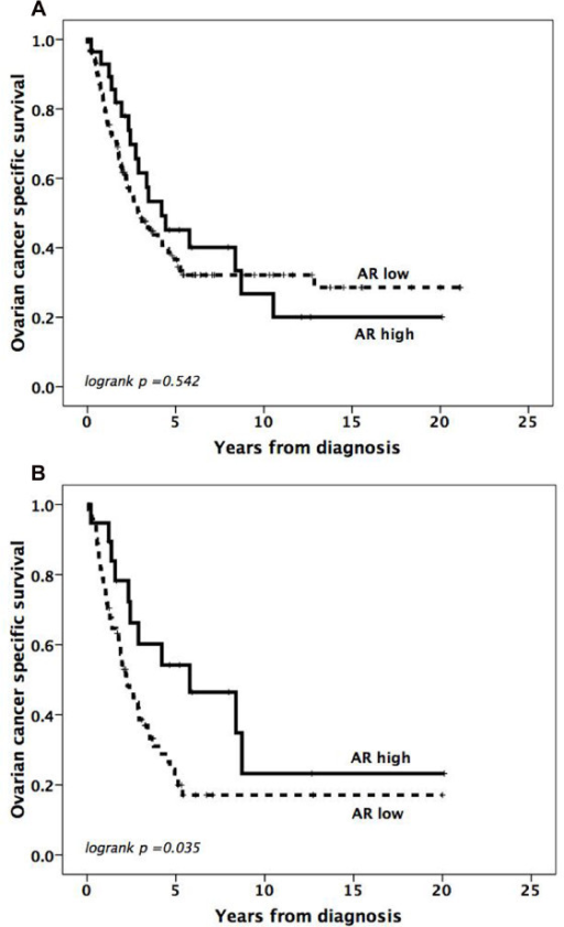 Impact of androgen receptor expression on ovarian cancer specific survival. Kaplan-Meier curves visualizing OCSS according to AR expression in all tumors (A) and serous carcinomas (B), using a threshold of 10% positive nuclei to define low and high AR expression. The total number of events was 52/71 (73%) in AR high serous tumors and 11/19 (58%) in AR low serous tumors.