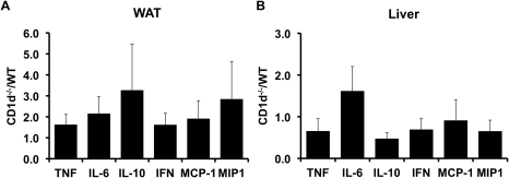 Inflammatory marker expression in adipose tissue and liver of wild-type and CD1d  mice.qRT-PCR was used to assess the expression of indicated genes in liver and adipose tissue from high fat fed wild-type (WT) and CD1d  (KO) mice. Results are presented as ΔΔCt (KO/WT) ±SE for a minimum of 5 animals in each group.
