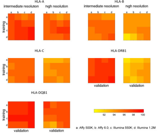 Comparison of cross-platform prediction accuracies among four genotyping arrays. Each square panel shows the accuracies of HLA predictive models built using SNPs observed and imputed from one genotyping array and validated using SNPs observed and imputed from another array. The confidence threshold was set at CT = 0.